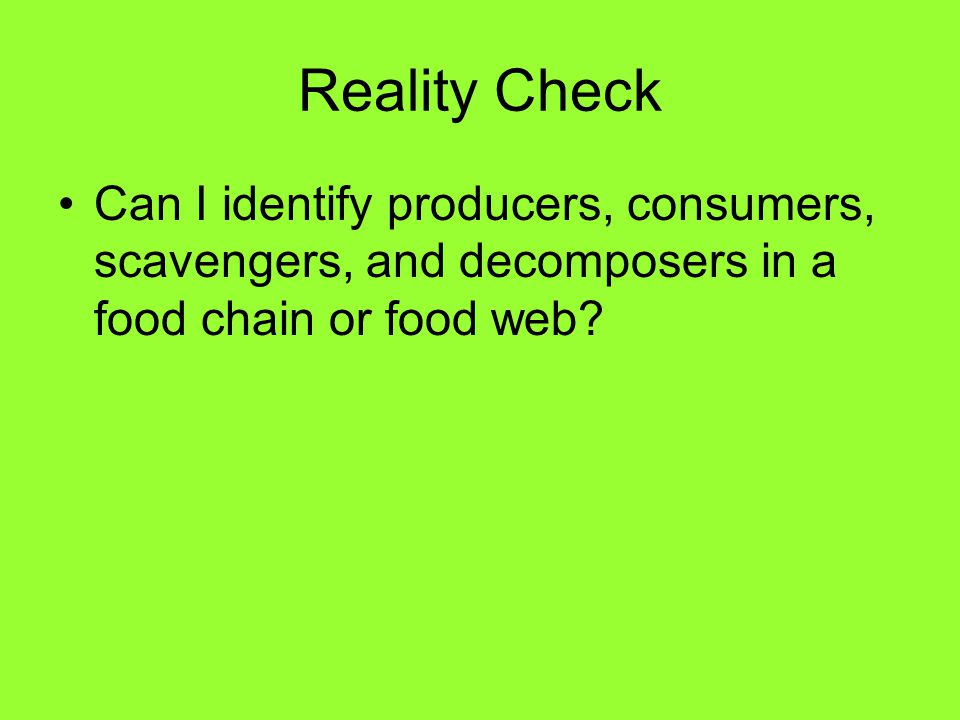 Reality Check Can I identify producers, consumers, scavengers, and decomposers in a food chain or food web?