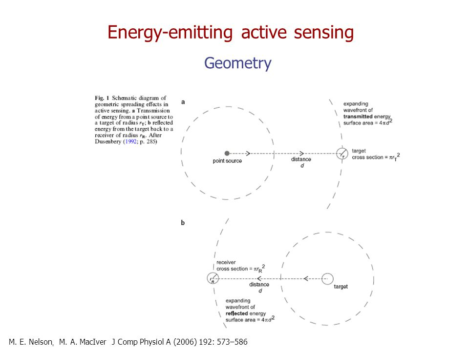 Energy-emitting active sensing Geometry M. E. Nelson ֶ M.