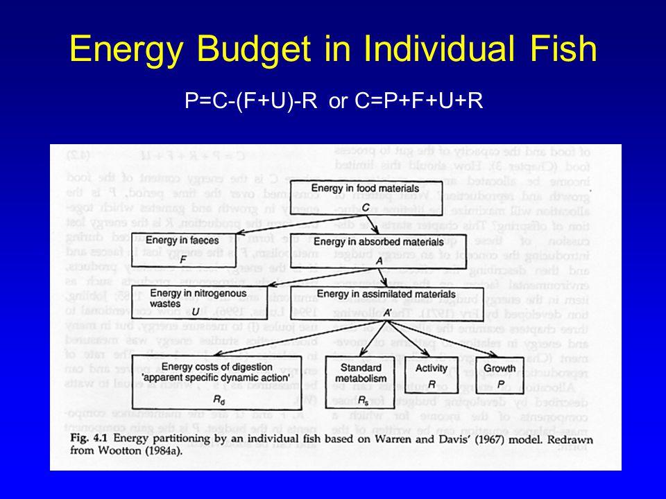 36 Energy Budget in Individual Fish P=C-(F+U)-R or C=P+F+U+R