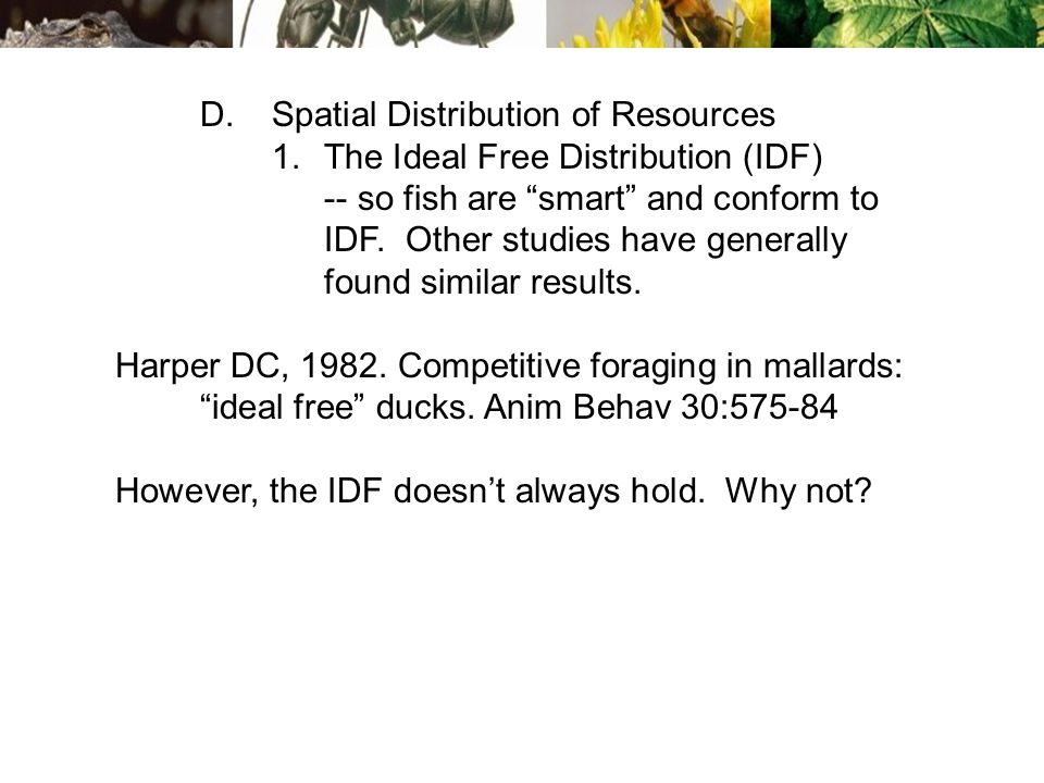 D.Spatial Distribution of Resources 1.The Ideal Free Distribution (IDF) -- so fish are smart and conform to IDF.
