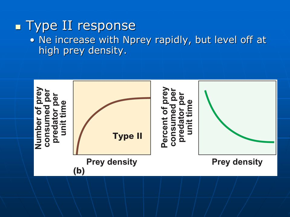 Type II response Type II response Ne increase with Nprey rapidly, but level off at high prey density.Ne increase with Nprey rapidly, but level off at high prey density.