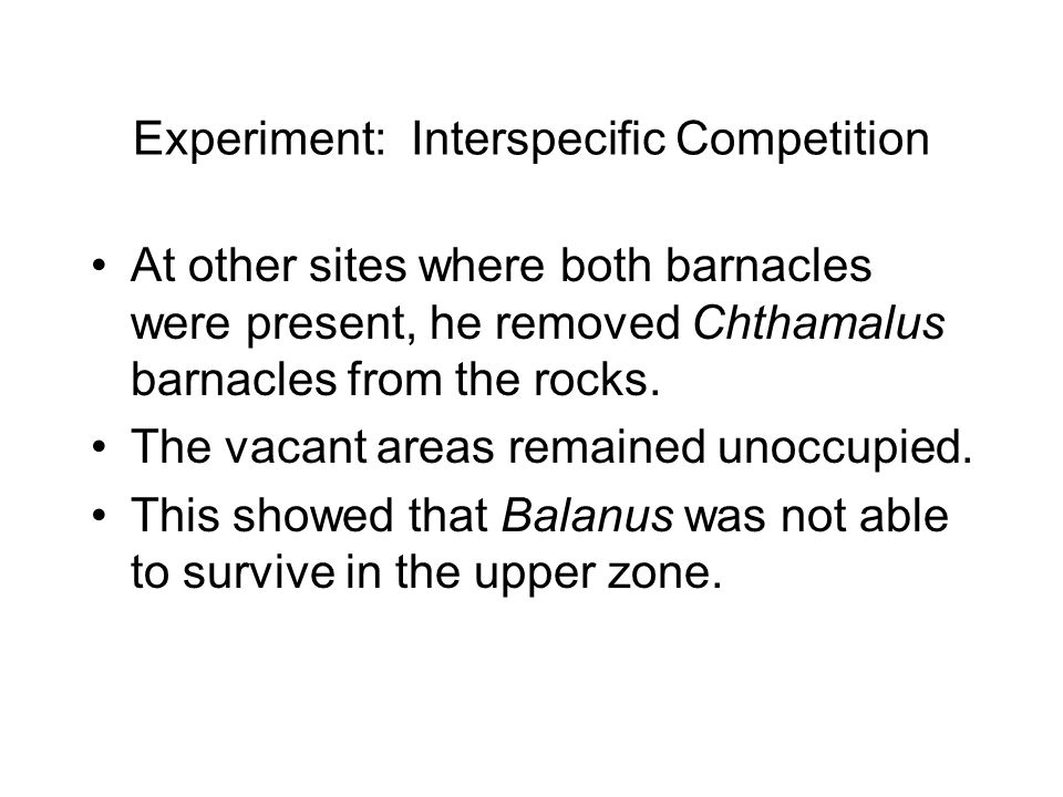 Experiment: Interspecific Competition At other sites where both barnacles were present, he removed Chthamalus barnacles from the rocks.