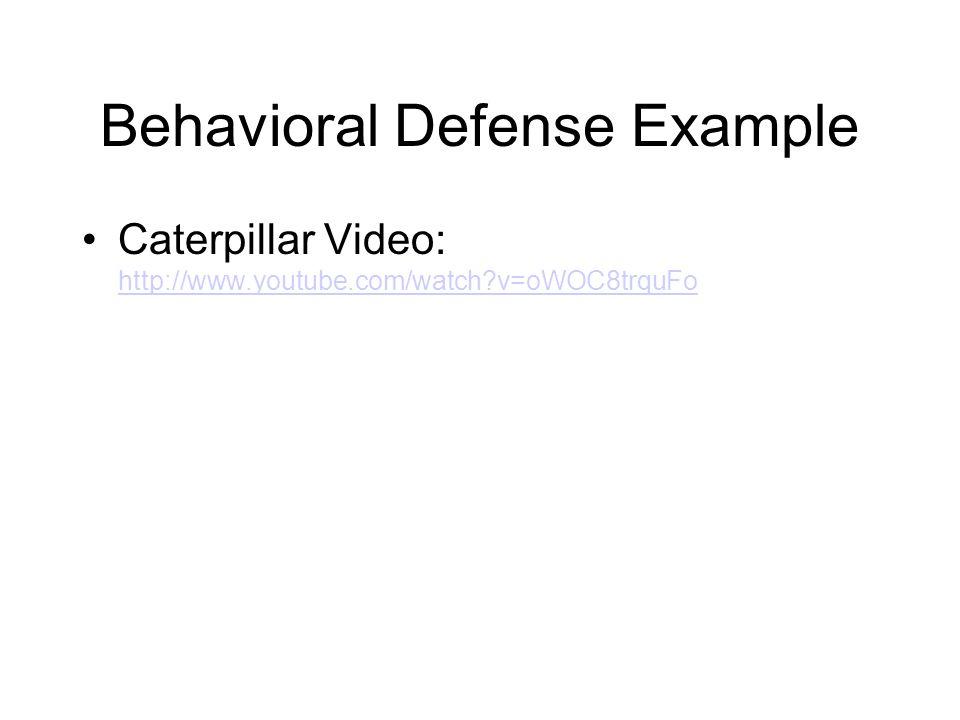 Behavioral Defense Example Caterpillar Video: http://www.youtube.com/watch?v=oWOC8trquFo http://www.youtube.com/watch?v=oWOC8trquFo