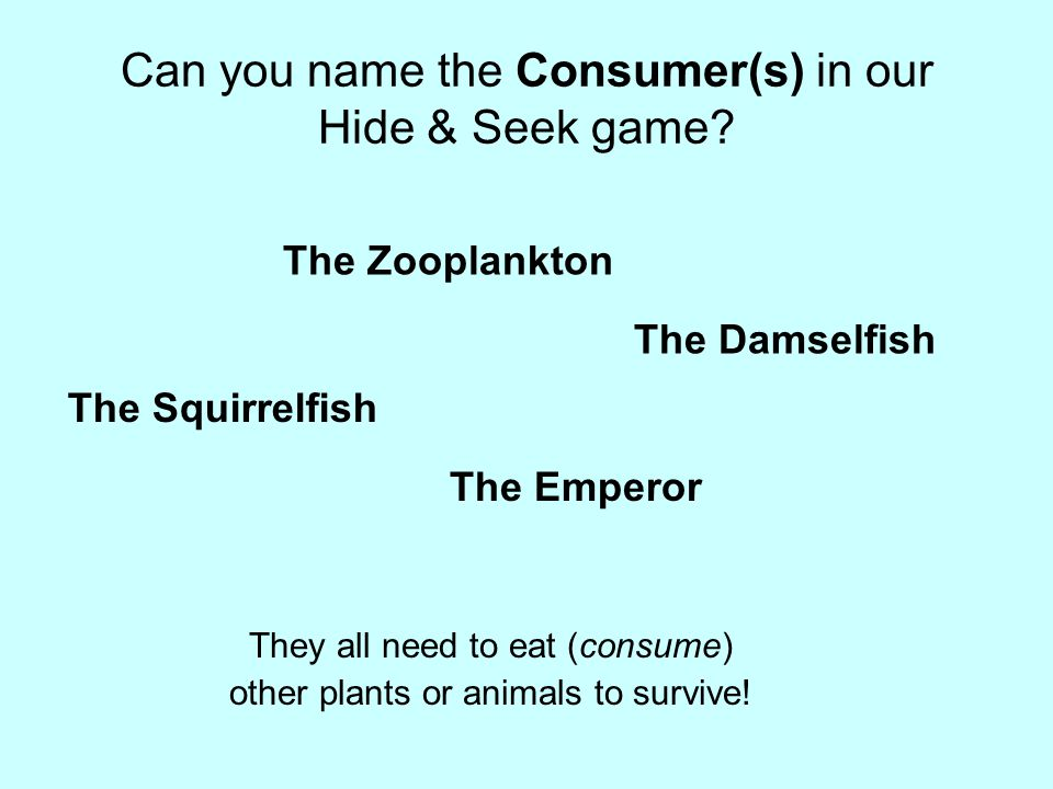 Can you name the Consumer(s) in our Hide & Seek game.