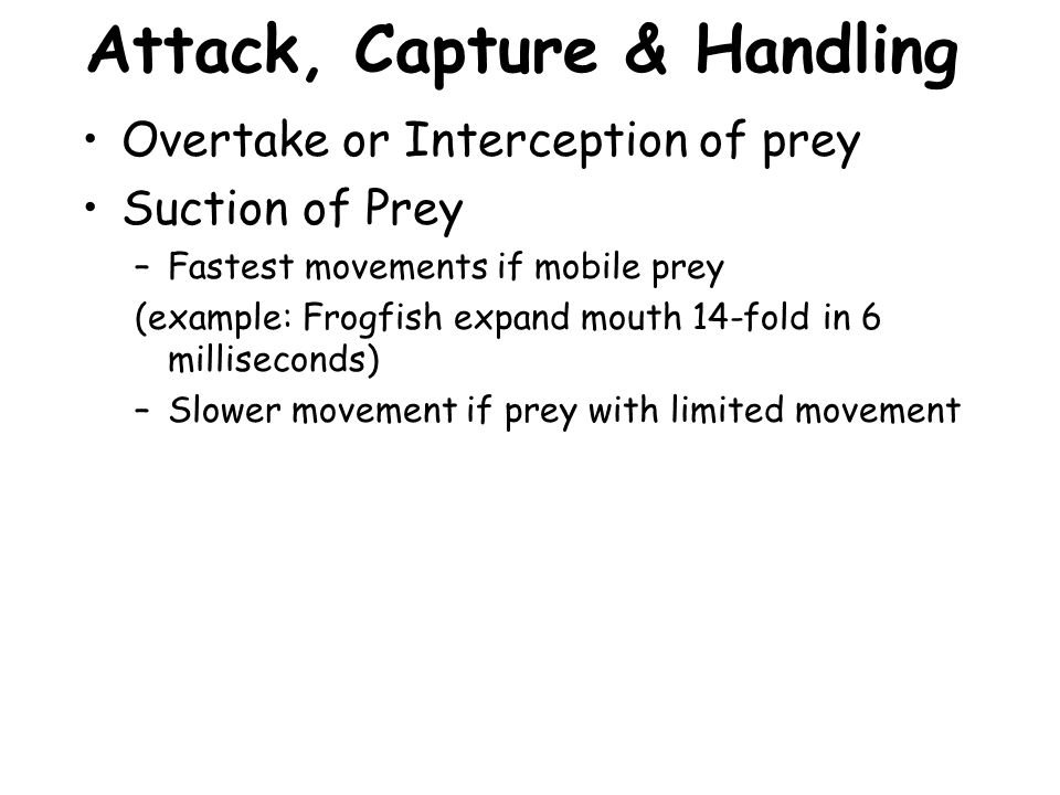 Attack, Capture & Handling Overtake or Interception of prey Suction of Prey –Fastest movements if mobile prey (example: Frogfish expand mouth 14-fold