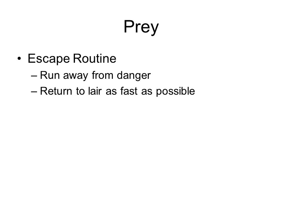 Prey Escape Routine –Run away from danger –Return to lair as fast as possible