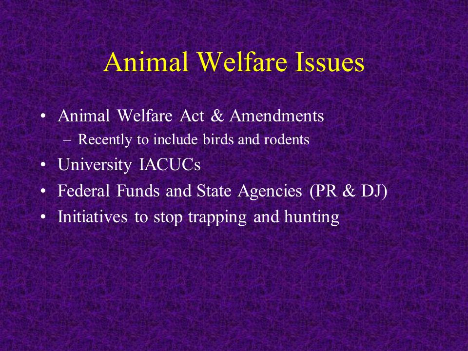 Animal Welfare Issues Animal Welfare Act & Amendments –Recently to include birds and rodents University IACUCs Federal Funds and State Agencies (PR & DJ) Initiatives to stop trapping and hunting
