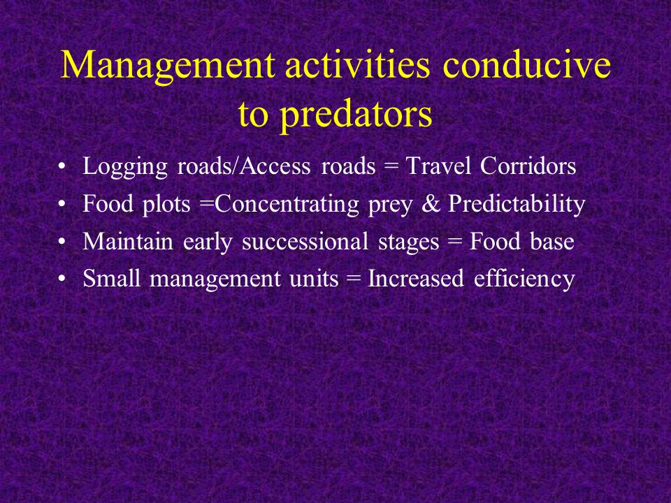 Management activities conducive to predators Logging roads/Access roads = Travel Corridors Food plots =Concentrating prey & Predictability Maintain ea