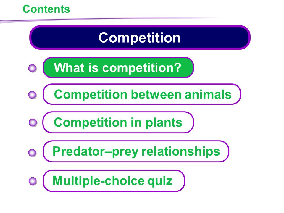 Contents Competition What is competition.