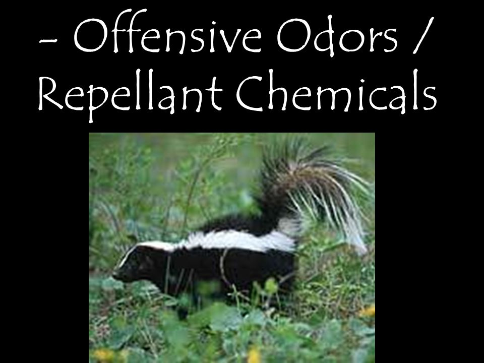 - Offensive Odors / Repellant Chemicals