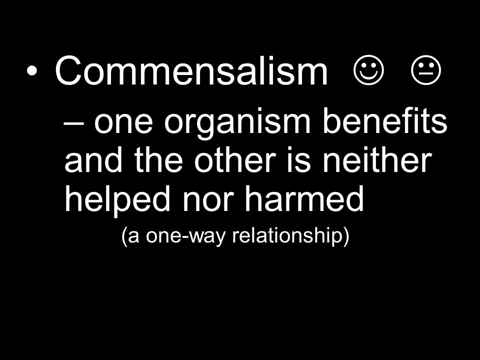 Commensalism – one organism benefits and the other is neither helped nor harmed (a one-way relationship)