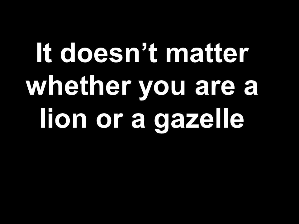 It doesn't matter whether you are a lion or a gazelle