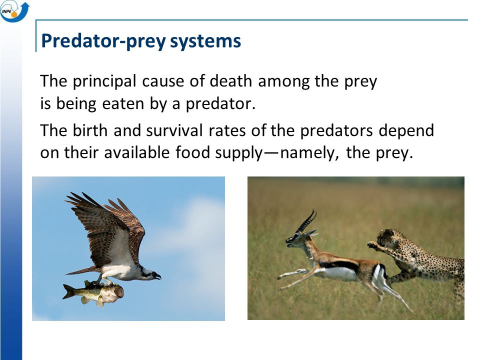 Predator-prey systems The principal cause of death among the prey is being eaten by a predator. The birth and survival rates of the predators depend o