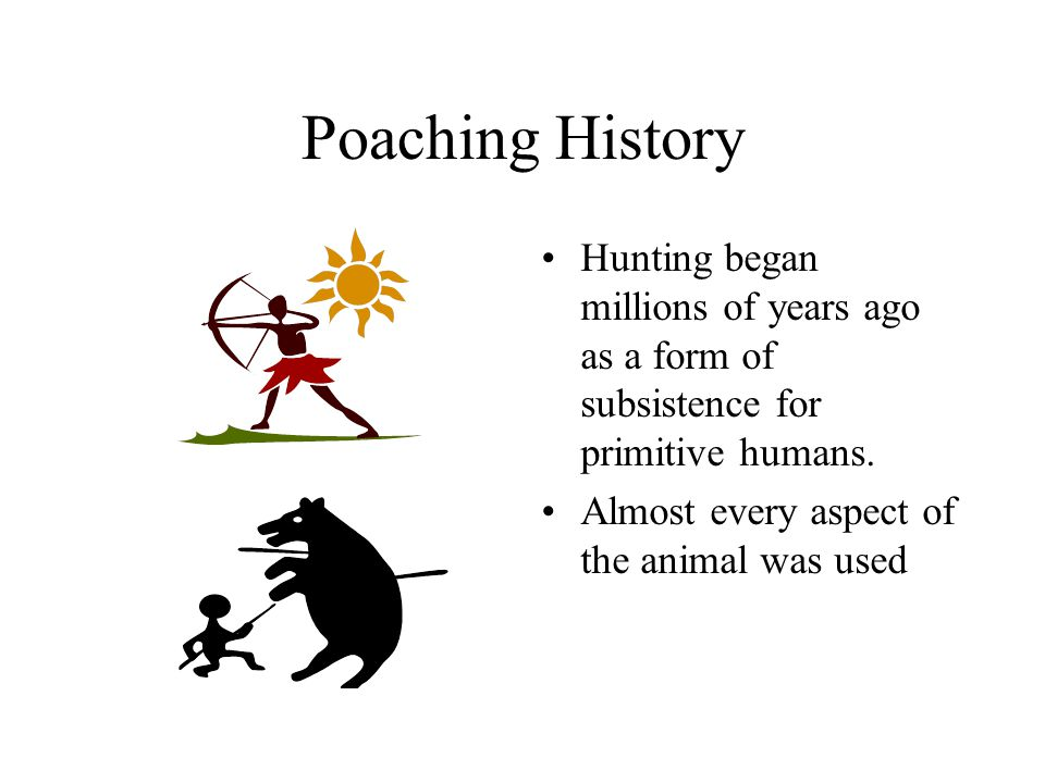 Poaching History Hunting began millions of years ago as a form of subsistence for primitive humans.