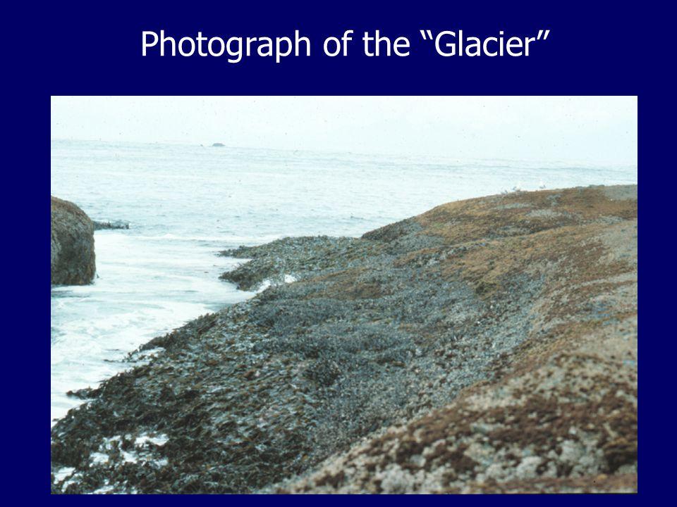 Photograph of the Glacier