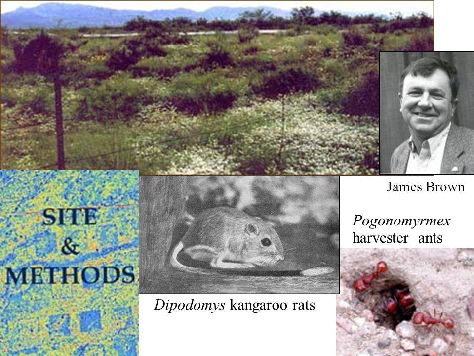 James Brown Dipodomys kangaroo rats Pogonomyrmex harvester ants