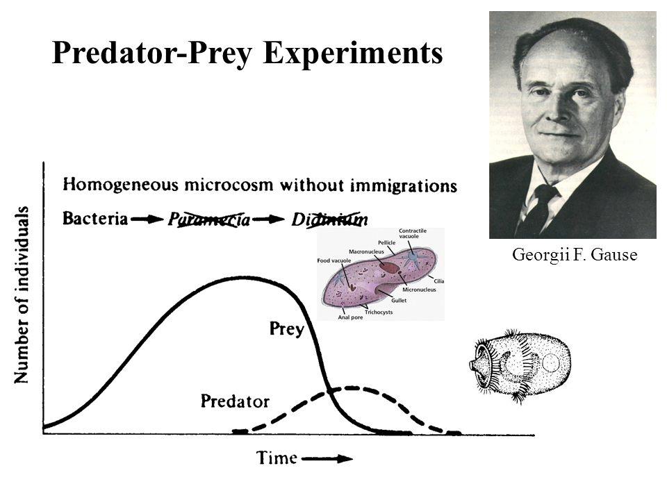 Predator-Prey Experiments Georgii F. Gause