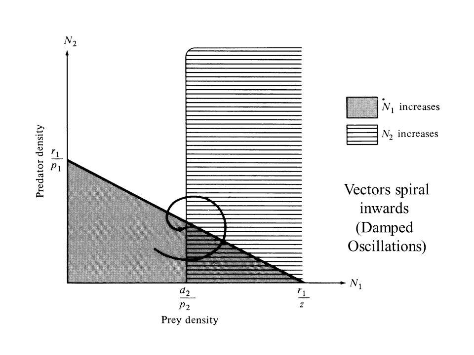 Vectors spiral inwards (Damped Oscillations)