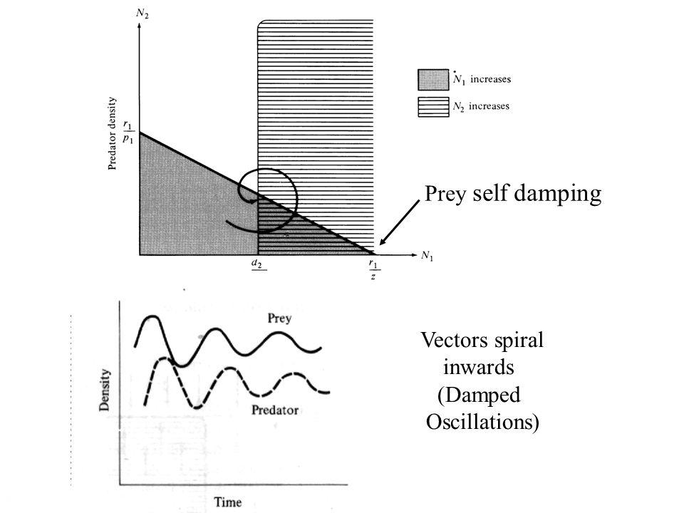 Vectors spiral inwards (Damped Oscillations) Prey self damping