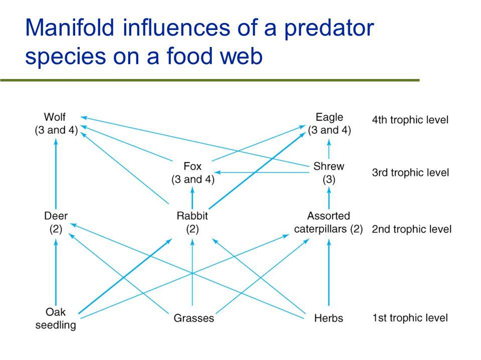 Manifold influences of a predator species on a food web