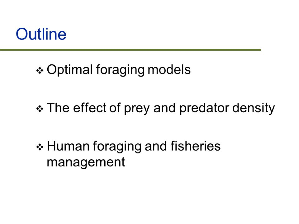 Outline  Optimal foraging models  The effect of prey and predator density  Human foraging and fisheries management