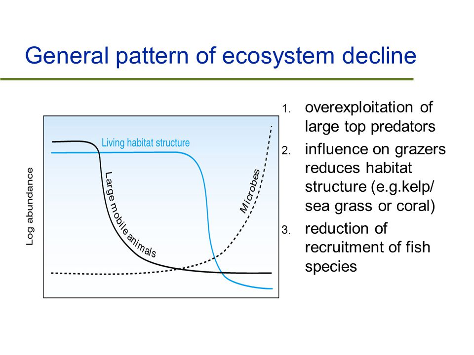 General pattern of ecosystem decline 1. overexploitation of large top predators 2.