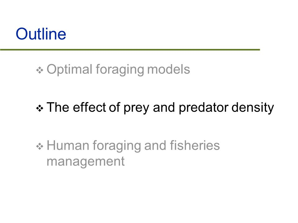 Summary  Optimal foraging models indicate that species must forage to maximize energy gain and minimize time spent  Density of both lower and higher trophic levels alter the optimal foraging dynamics of a species  Human beings are optimally foraging on fish species in the world and are threatening their existence