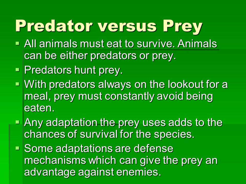Predator versus Prey  All animals must eat to survive.