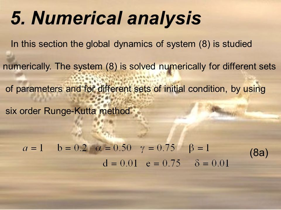 In this section the global dynamics of system (8) is studied numerically. The system (8) is solved numerically for different sets of parameters and fo