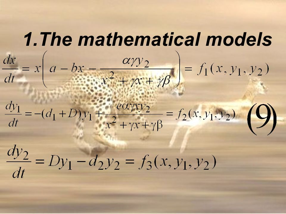 1.The mathematical models