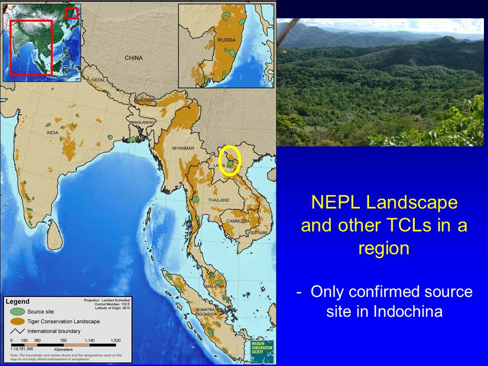 NEPL Landscape and other TCLs in a region - Only confirmed source site in Indochina