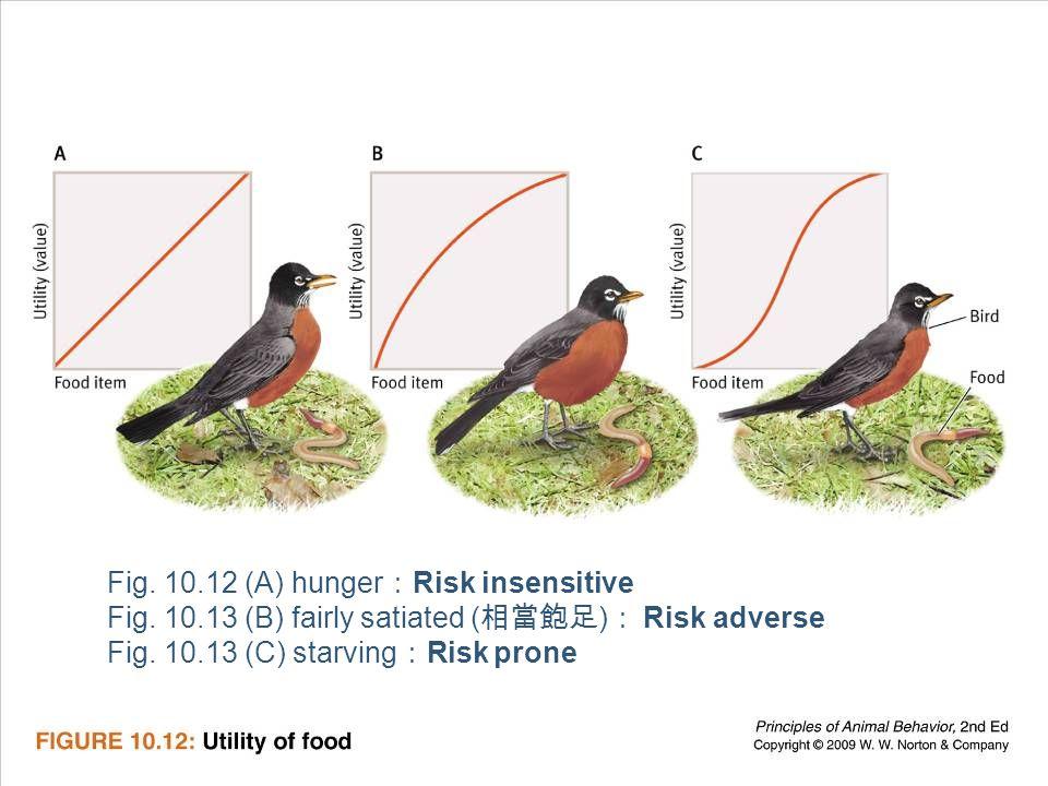 Ayo 2010 Ethology29 Fig.10.12 (A) hunger : Risk insensitive Fig.