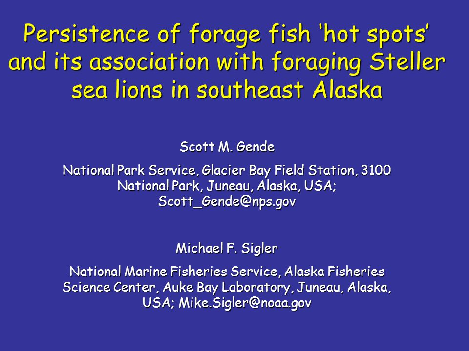 Persistence of forage fish 'hot spots' and its association with foraging Steller sea lions in southeast Alaska Scott M. Gende National Park Service, G