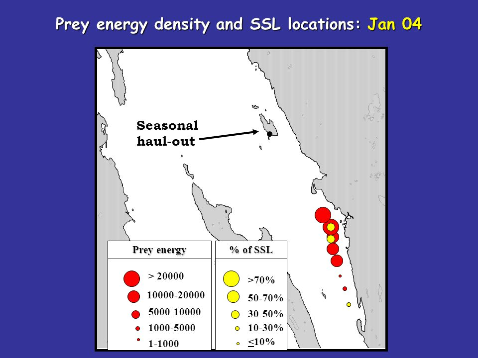 Seasonal haul-out > 20000 10000-20000 5000-10000 1000-5000 1-1000 Prey energy density and SSL locations: Jan 04 >70% 50-70% 30-50% 10-30% <10% Prey energy % of SSL