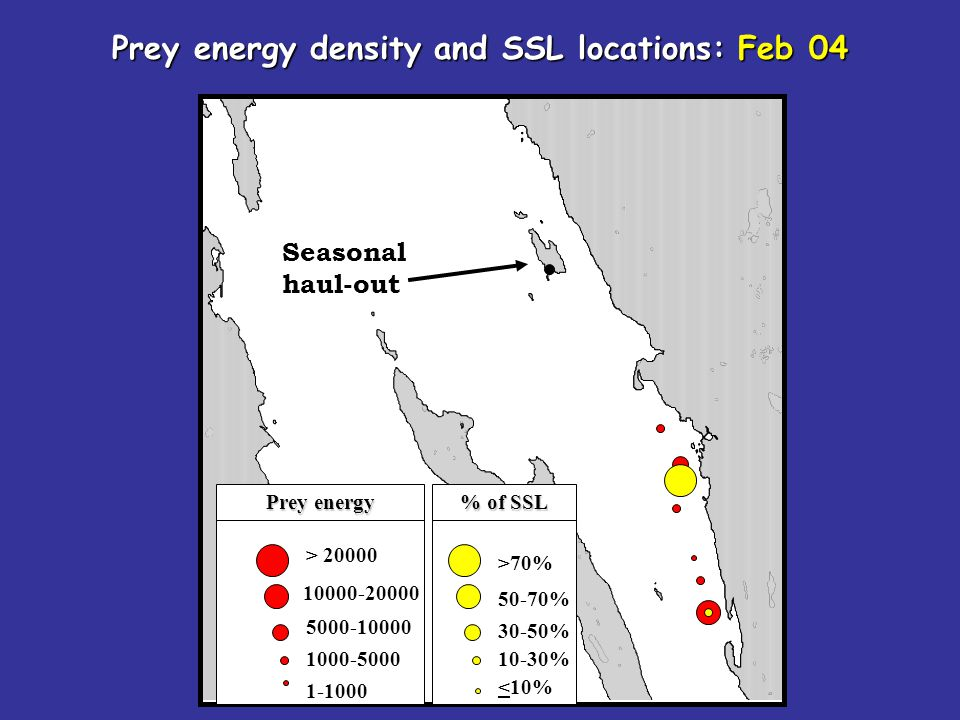 Seasonal haul-out > 20000 10000-20000 5000-10000 1000-5000 1-1000 Prey energy density and SSL locations: Feb 04 >70% 50-70% 30-50% 10-30% <10% Prey en