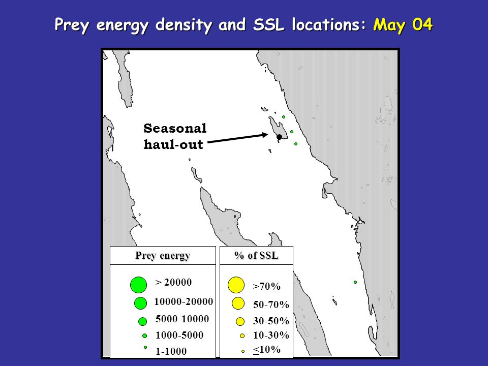 Seasonal haul-out > 20000 10000-20000 5000-10000 1000-5000 1-1000 Prey energy density and SSL locations: May 04 >70% 50-70% 30-50% 10-30% <10% Prey energy % of SSL