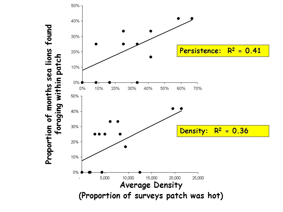 Proportion of months sea lions found foraging within patch Persistence: R 2 = 0.41 Average Density (Proportion of surveys patch was hot) Density: R 2 = 0.36