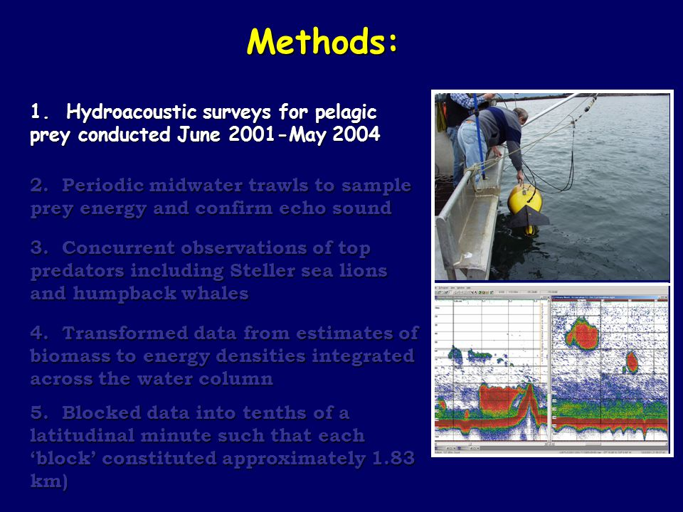 Methods: 1. Hydroacoustic surveys for pelagic prey conducted June 2001-May 2004 2. Periodic midwater trawls to sample prey energy and confirm echo sou