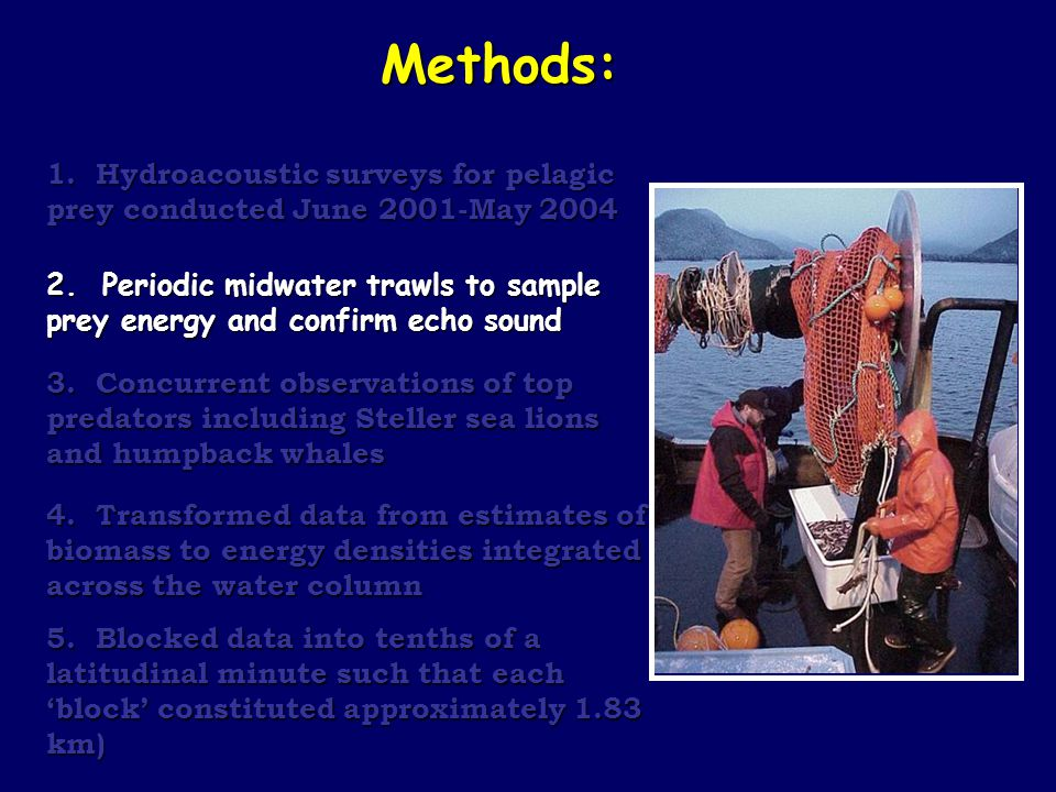 Methods: 1.Hydroacoustic surveys for pelagic prey conducted June 2001-May 2004 2.