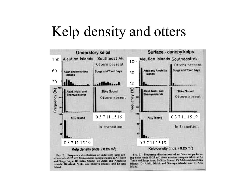 Kelp density and otters 0 3 7 11 15 19 100 60 20 100 60 20