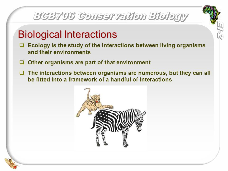   Ecology is the study of the interactions between living organisms and their environments   Other organisms are part of that environment   The interactions between organisms are numerous, but they can all be fitted into a framework of a handful of interactions Biological Interactions