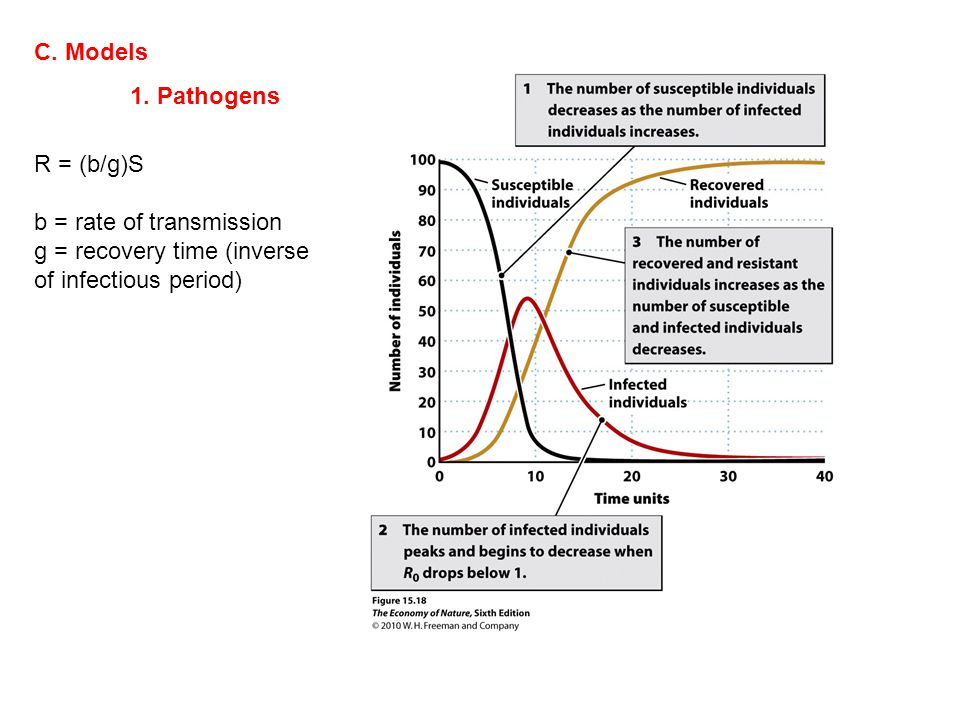 C. Models 1. Pathogens R = (b/g)S b = rate of transmission g = recovery time (inverse of infectious period)