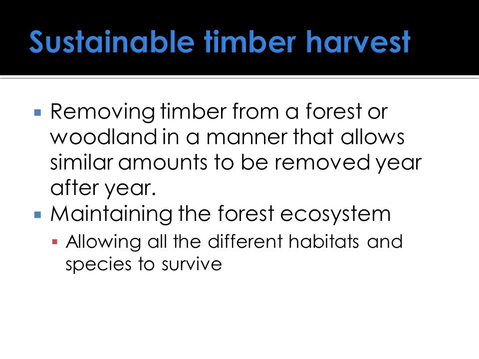  Removing timber from a forest or woodland in a manner that allows similar amounts to be removed year after year.  Maintaining the forest ecosystem