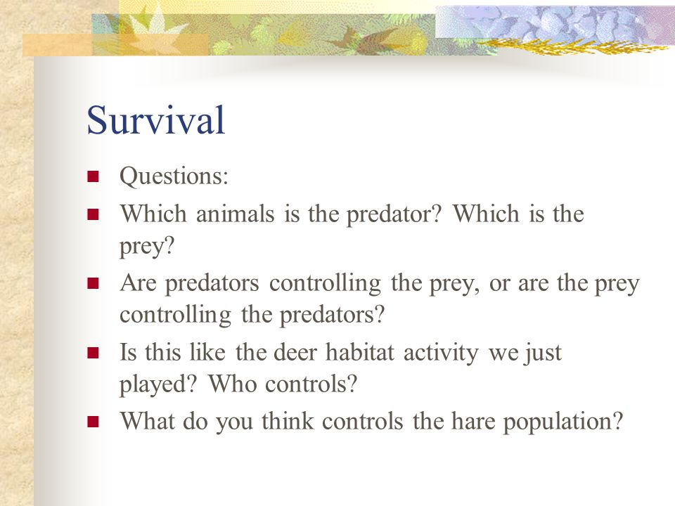 Questions: Which animals is the predator.Which is the prey.