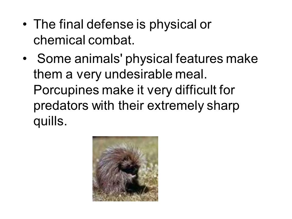 The final defense is physical or chemical combat.