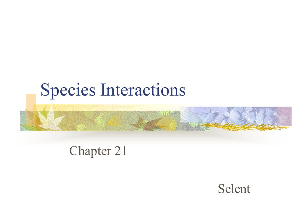 Species Interactions Chapter 21 Selent