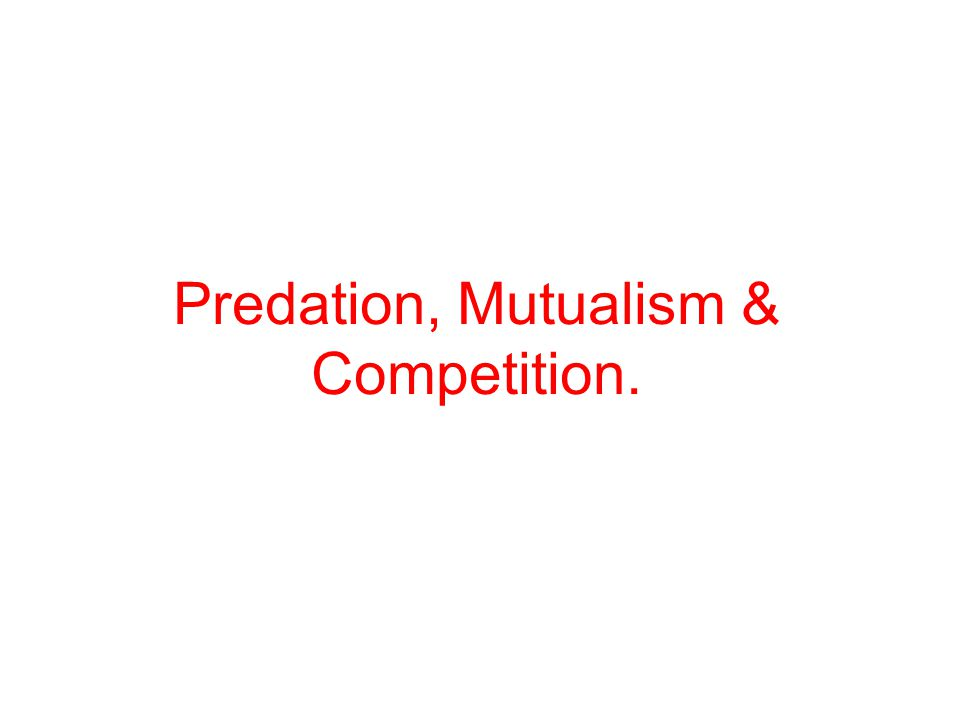 Predation, Mutualism & Competition.