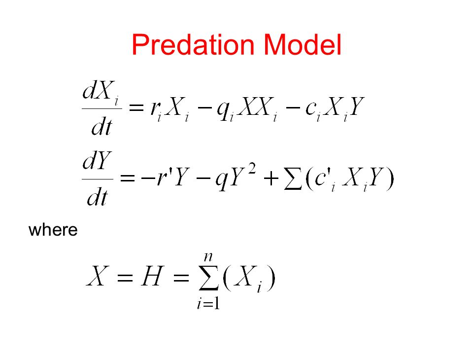 Predation Model where
