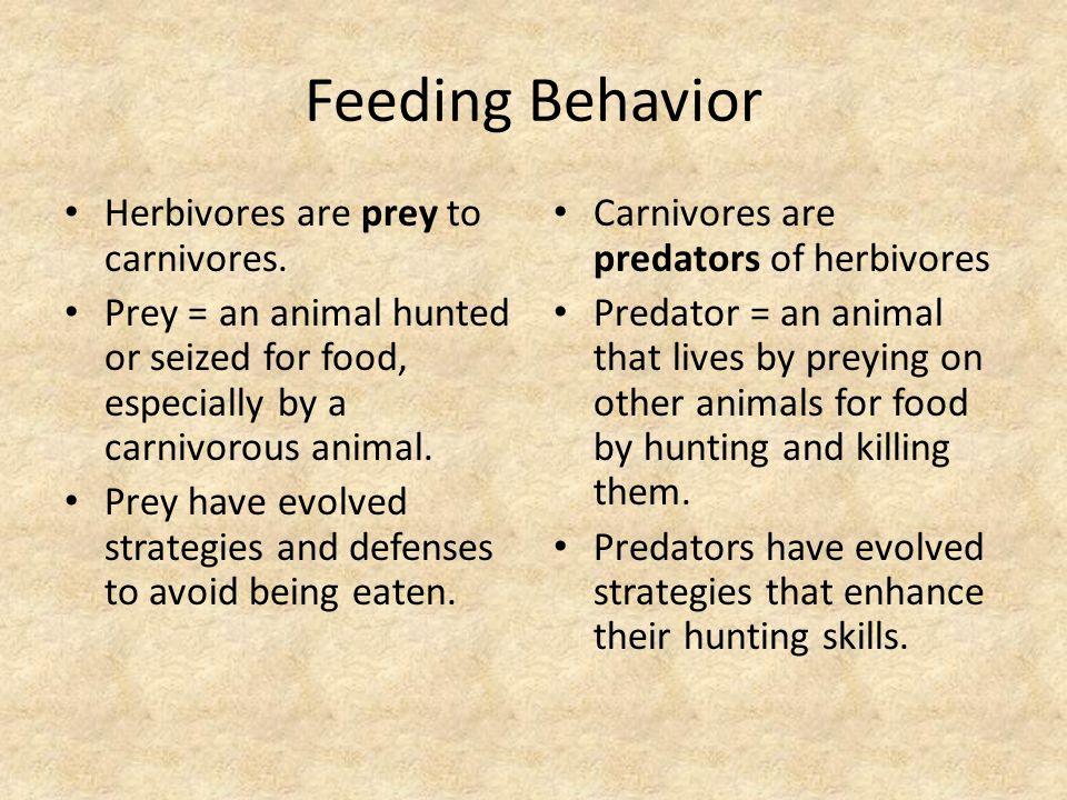 Feeding Behavior Evolve = To change over time.