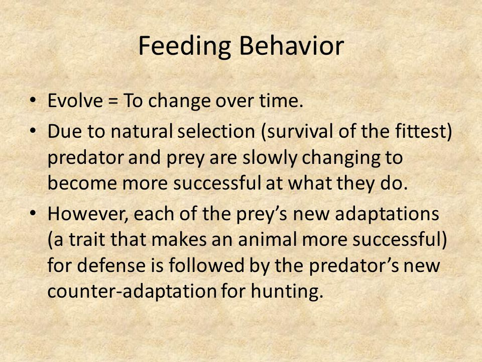Feeding Behavior Evolve = To change over time.